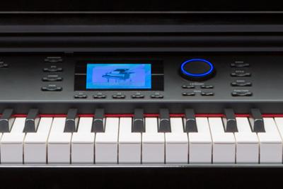 Williams Symphony Grand Piano close up