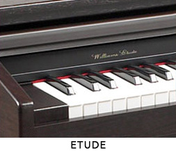 Williams Etude