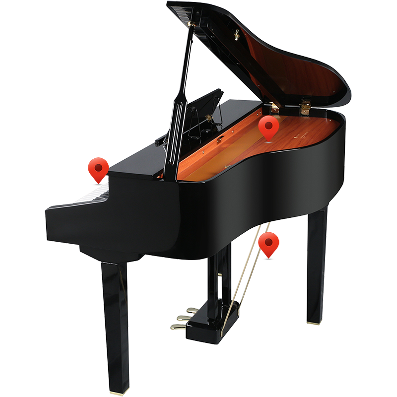 Williams Symphony Grand II Back View